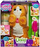 Furreal Friends Daisy Plays with Me Kitty by Fur Real Friends