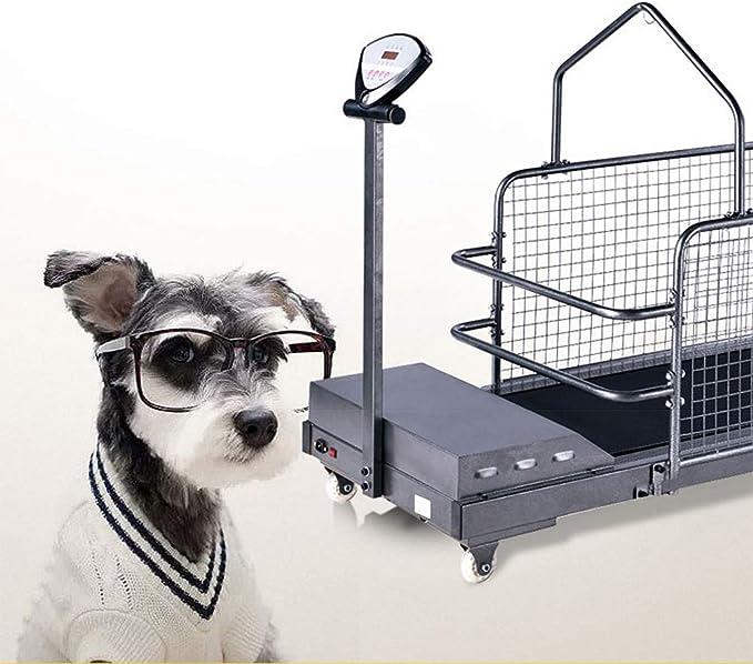 MMUY-1 Cinta para Correr para Perros, Cinta para Correr Fitness ...