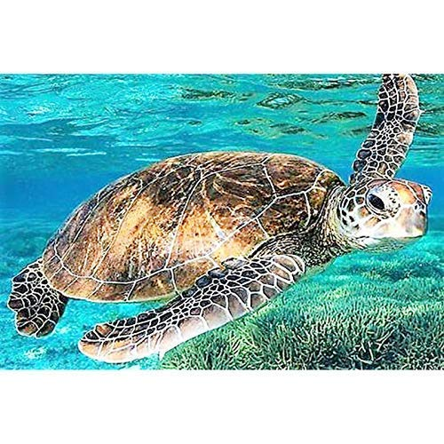 - DIY Round Diamond Painting Kits for Adults Full Drill Cross Stitch Turtles in The Sea Home Decoration 30x20CM