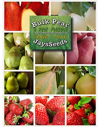 Bulk 8 Pear Tree Seeds Survival Seeds 530 Seeds Upc 788045381239 Pear Seeds   3 Packets Of Strawberry Seeds