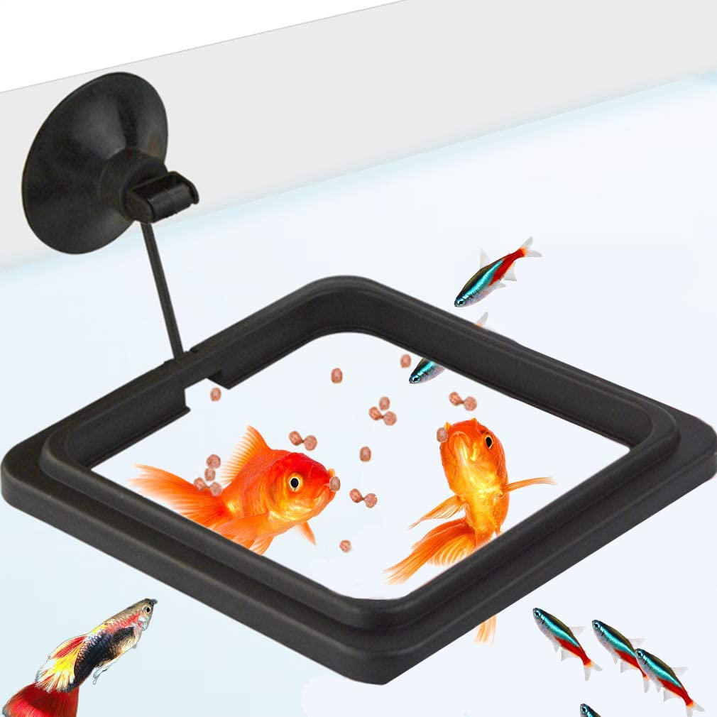 SunGrow Feeding Ring, 4x4 Inches, Floating Food Square, Easy to Install, Reduces Waste and Maintains Water Quality, Suitable for Flakes and Floating Fish Foods, for Goldfish and Other Smaller Fish