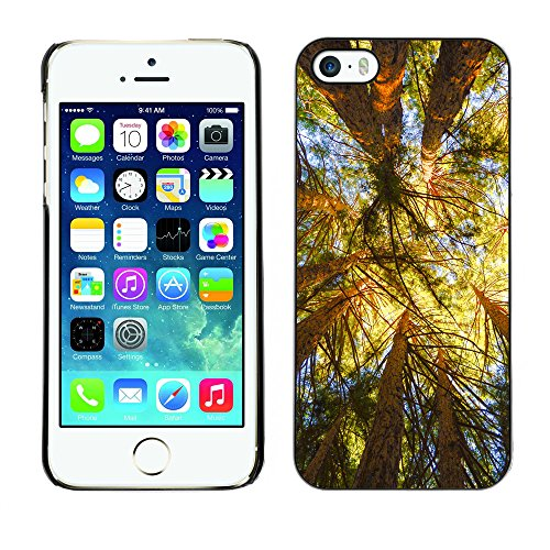 Premio Sottile Slim Cassa Custodia Case Cover Shell // F00004979 arbres séquoias // Apple iPhone 5 5S 5G