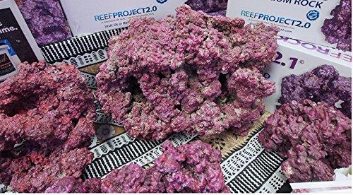 Walt Smith 2.1 Nano Reef Rock, 22 lb