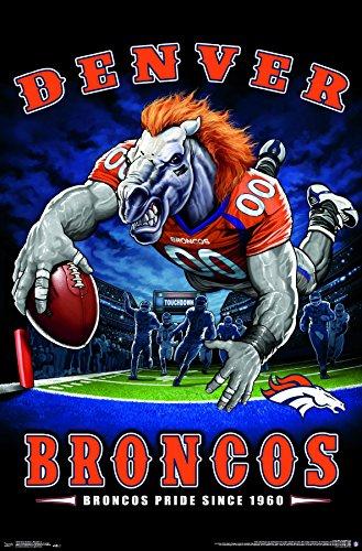 Trends International Denver Broncos - End Zone Premium Wall Poster, 22.375