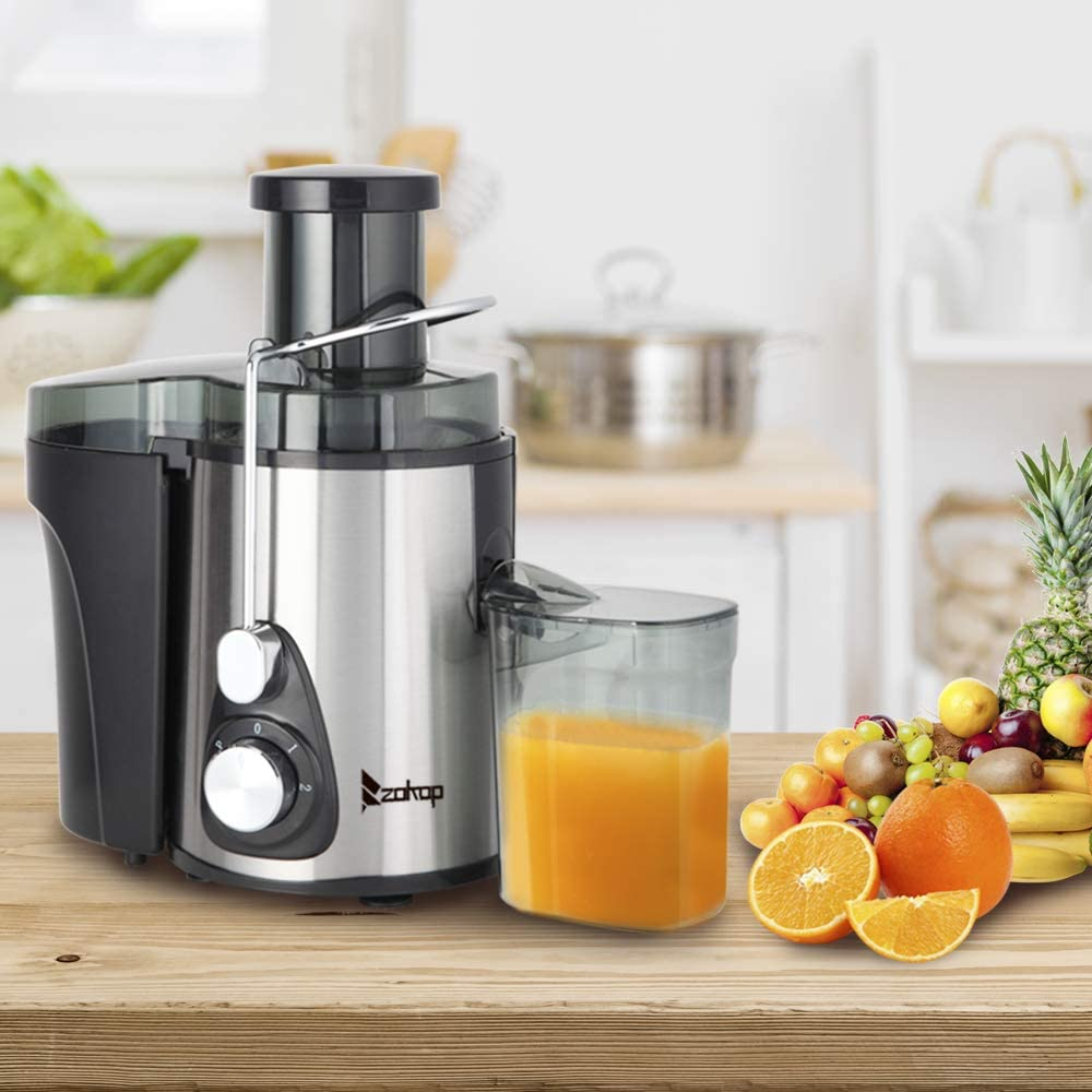 600W 1 Liter Blender for Milkshake, Fruit Vegetables Drinks, Ice,Anti-Drip Juicer,Auto shut-off Protection Blenders with Cup for Home Kitchen,Stainless Steel & ABS Plastic