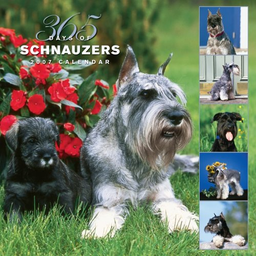 Schnauzers, 365 Days 2007 Calendar