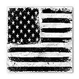 united states bandanna - Ambesonne United States Bandana, American Flag, Unisex Head and Neck Tie