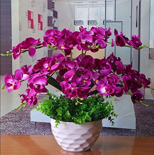 LIXIAOXIN Phalaenopsis Florero Artificial Establecida Decoración Falso Púrpura