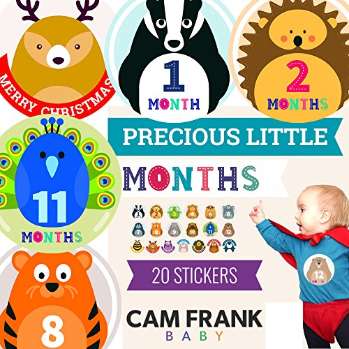 20 Baby Monthly Stickers for Baby Girls or Boys, Baby Shower Gift with 12 Month Animal Themed Milestone with 7 Holidays Included Pack, Easy to Stick on Onesies and Add to Scrapbook, New Newborn (Themed Pack)