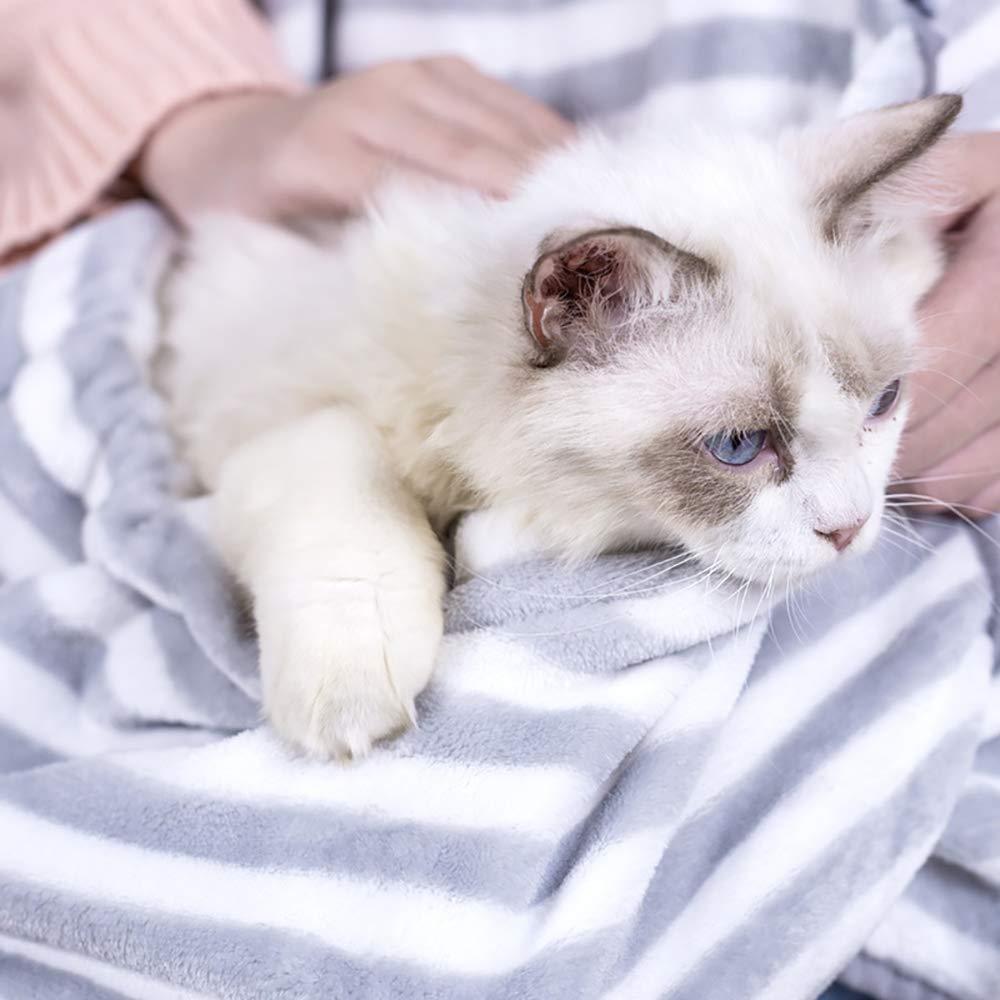 QNMM Katzenschürze mit Tasche Haustieren Grünraut Super Soft Holding Pet Pet Pet Cats oder Welpen Geeignet für Kätzchen, um Sich bequem auszuruhen B07MCBZD3Y | Hervorragende Eigenschaften  51af76