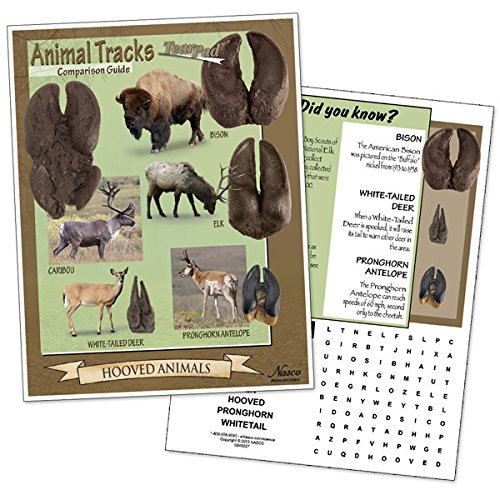 Nasco SB49227 Tracks of Common Hooved Animals Comparison Guide Tear Pad