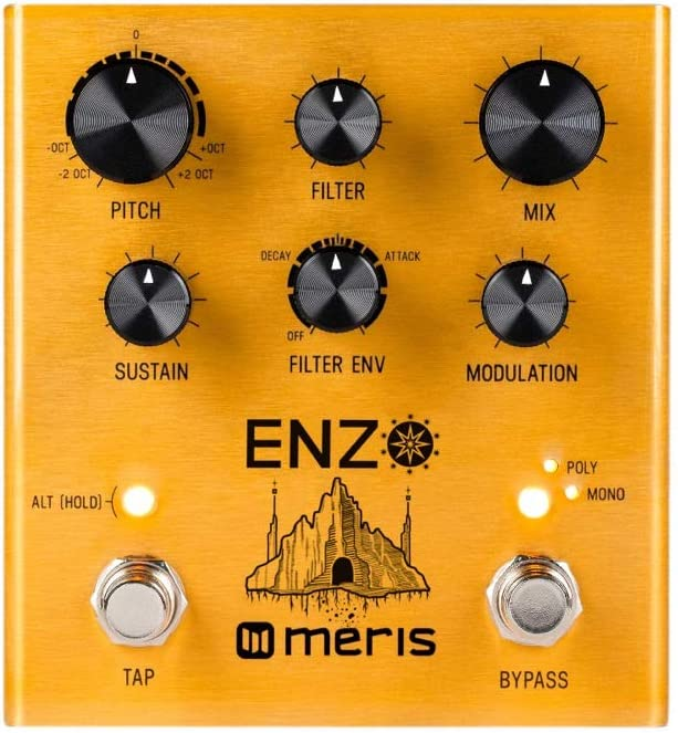 Meris Enzo Multi-Voice Synthesizer Pedal