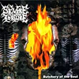 Butchery Of The Soul by Severe Torture