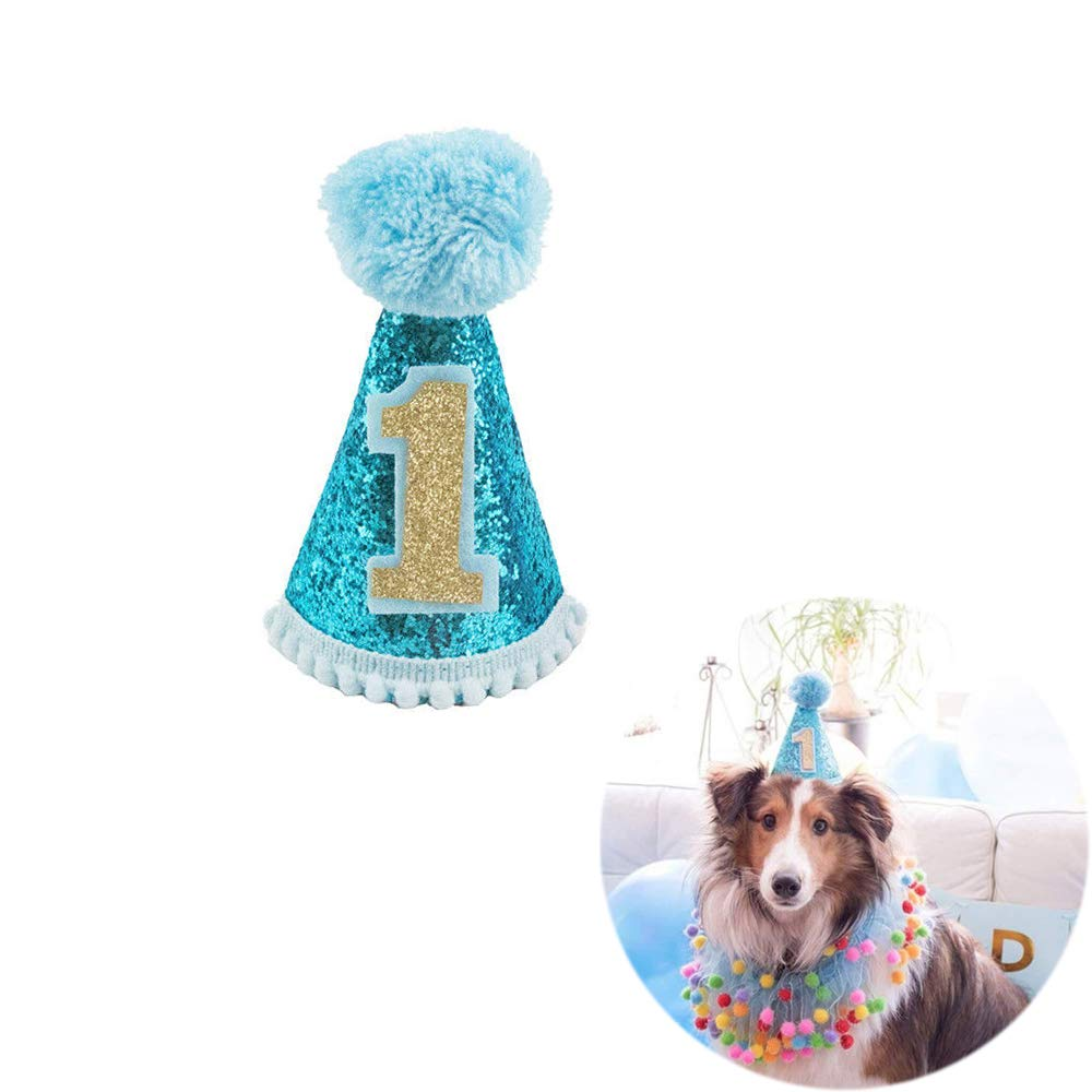 Amazon Unetox Pet Dog Cat Birthday Party First Cone Hat Mini Doggy Hats 1PC Blue Supplies