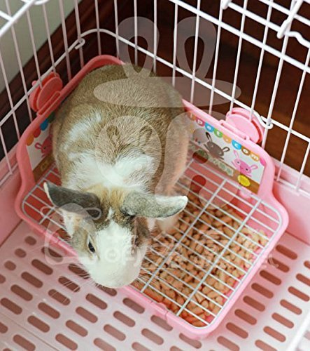 ZoeZ Square Potty Trainer Corner Litter Bedding Box Pet Pan for Small Animal/rabbit/guinea Pig/galesaur/ferret by ZoeZ (Image #7)