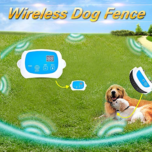 Maxtronic Portable Wireless Dog Fence, NO Wires to BURY-800FT Containment System with Rechargeable Receiver and Transmitter, The 3nd Generation GW-1