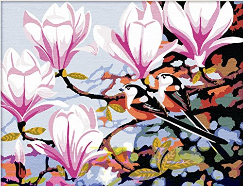 CaptainCrafts New Paint by Number Kits - Pink Magnolia Flower 16x20 inch Frameless - Diy Painting by Numbers for Adults Beginner Kids