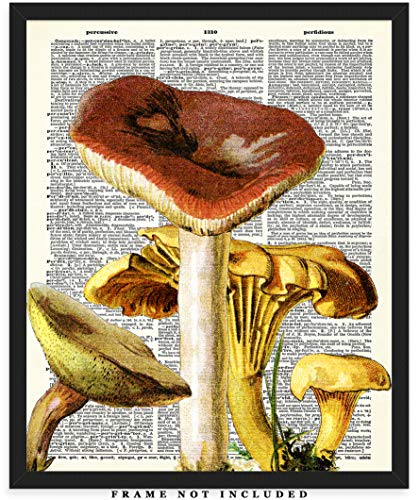 Mushrooms Dictionary Wall Art Print: Unique Room Decor for Boys, Men, Girls & Women - (8x10) Unframed Picture - Great Gift Idea Under $15