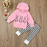 Clearance!!1PC Tops+1PC Pants Outfits,Toddler Infant Baby Girls Boys Pigs Print Clothes Set 0-24 Monthes (6M, Pink)
