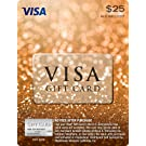 $25 Visa Gift Card (plus $3.95 Purchase Fee)