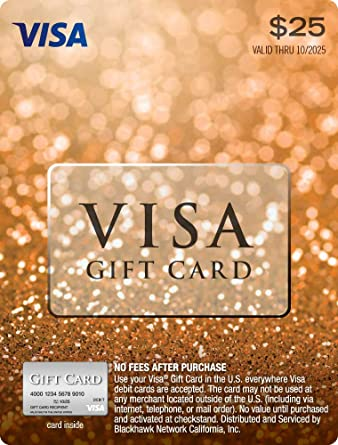 $25 Visa Gift Card (Plus $3.95 Purchase Fee) by Visa