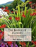 The Bridge of Flowers