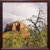 Mtn. Peak With Foliage-HARLAN78299 Print 19''x19'' by Harold Silverman - Landscapes in a Cherry Grande