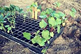 Heavy-Duty Seed Starting Trays (5 pack) | 162