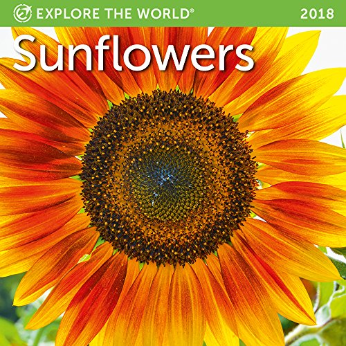 Sunflowers Mini Wall Calendar 2018