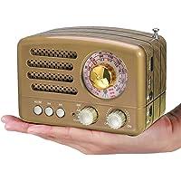 PRUNUS Radio Transistor FM Am SW SD USB MP3 Bluetooth de Formato de Madera Retro-Clásico, con Altavoz, función AUX, Sintonizador Circular de 270º y indicador de sintonía(Oro)