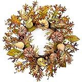 Melrose International Pumpkin and Gourd Wreath, 26', Rust/Green coupons 2017