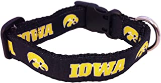 product image for NCAA Iowa Hawkeyes Dog Collar (Team Color, Small)