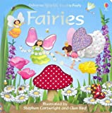 img - for Usborne Sparkly Touchy-feely Fairies book / textbook / text book