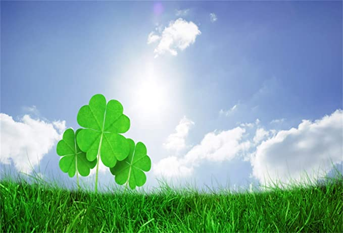 LB 8x6ft St.Patricks Day Backdrops for Party Shamrock Balloons Clover Pot Spring Green Grass Rustic Brown Wood Photography Background,Fabric Seamless Washable Customized Photo Booth Studio Props