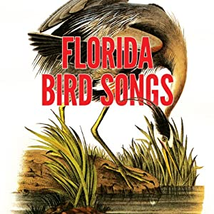 Florida Bird Songs Audiobook