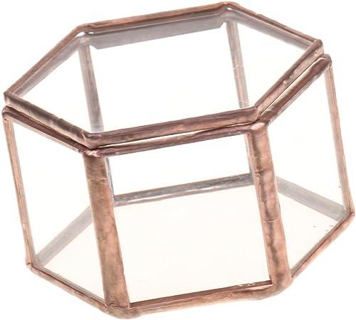 IPOTCH Hexagonal Caja de Cristal Transparente para Planta/Joya/Pequeños Objetos: Amazon.es: Juguetes y juegos