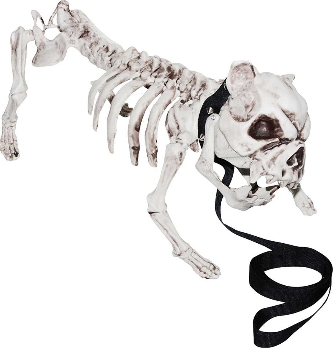 halloween prop decoration skeleton dog amazoncom industrial scientific