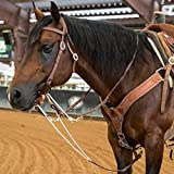 Berlin Custom Leather Martingale Hermann Oak Barrel Reins Oiled H846