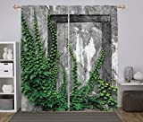 iPrint 2 Panel Set Window Drapes Kitchen Curtains,Mystic House Decor Ivy on Wall with Aged Antique Empty Picture Frame as Window Creative Art Green Charcoal,for Bedroom Living Room Dorm Kitchen Cafe