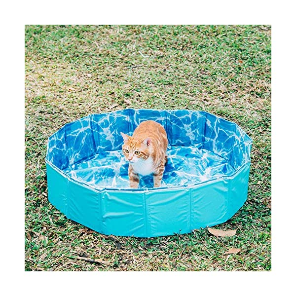 GoPetee Foldable Dog Swimming Pool Puppy Cats Paddling Pool Bathing Tub for Pet Children Kid (Ocean Wave, 80 * 20CM,) 7