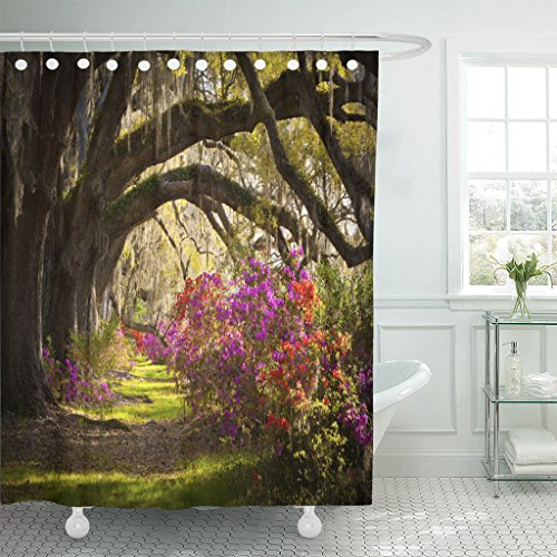 - Emvency Shower Curtain Charleston Sc Plantation Live Oak Trees Spanish Moss Azalea Flowers Blooming Spring Blooms Waterproof Polyester Fabric 72 x 72 inches Set with Hooks