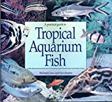 img - for A Practical Guide to Tropical Aquarium Fish book / textbook / text book
