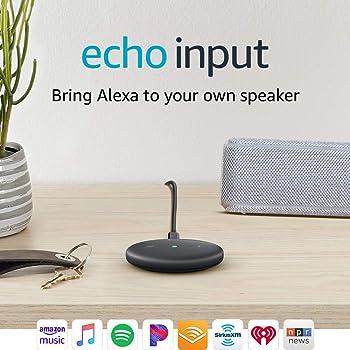 Echo Input Bring Alexa to Your Own Speaker