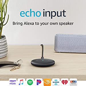 Echo Input – Bring Alexa to your own speaker- Black