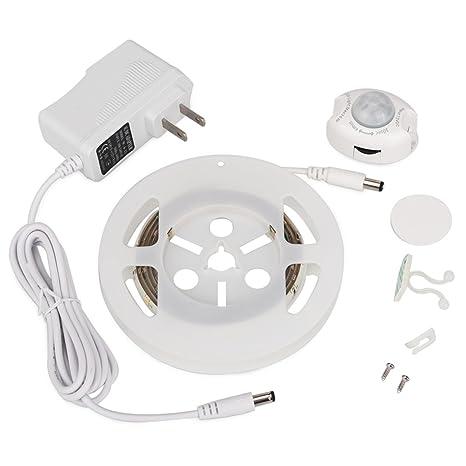 LDE Light 2835SMD 3 W 36LED (DC12 V) blanca cálida blanca fría de la