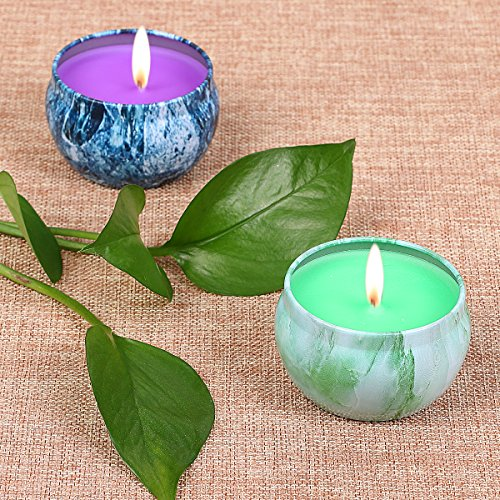LOHOTEK Scented Candles Grapefruit & Bergamot Scented Candles, Set 2 100% Soy Candles Use for Aromatherapy, Travel Tins, Mothers Day Gift Grapefruit Set