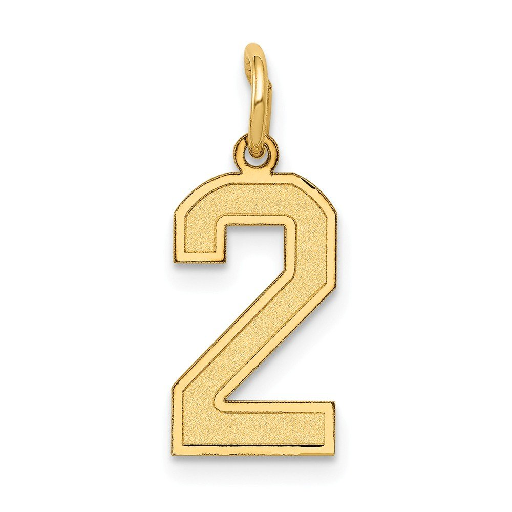 14k Yellow Gold Number 2 Pendant Two Digit Charm Satin Small
