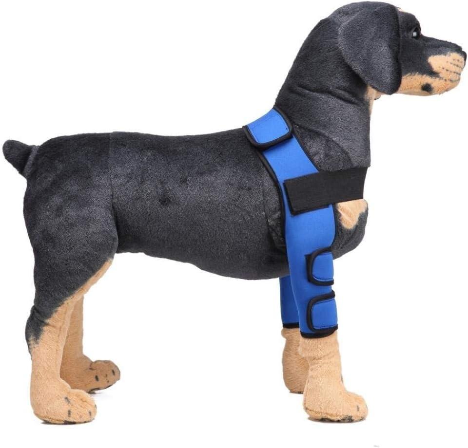 Z-PET Soporte For La Pierna del Perro del Animal Doméstico Soporte For Piernas Caninos Patas Delanteras Correas For El Corsé Proteger Heridas, Protector De Codo De Perro (Color : Blue, Size : L)