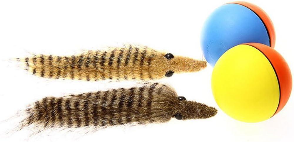 Fliyeong Hund Katze Biber Wiesel Springen Bewegen Rolling