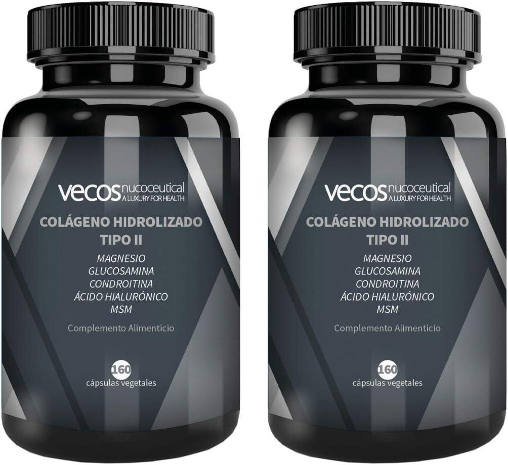 COLAGENO HIDROLIZADO TIPO 2 para Articulaciones con Glucosamina, Condroitina, Magnesio, MSM y Ácido Hialuronico. Para el cuidado de Huesos y ...
